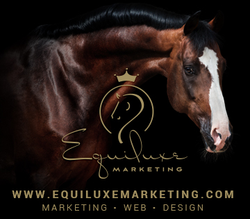 Equiluxe Marketing