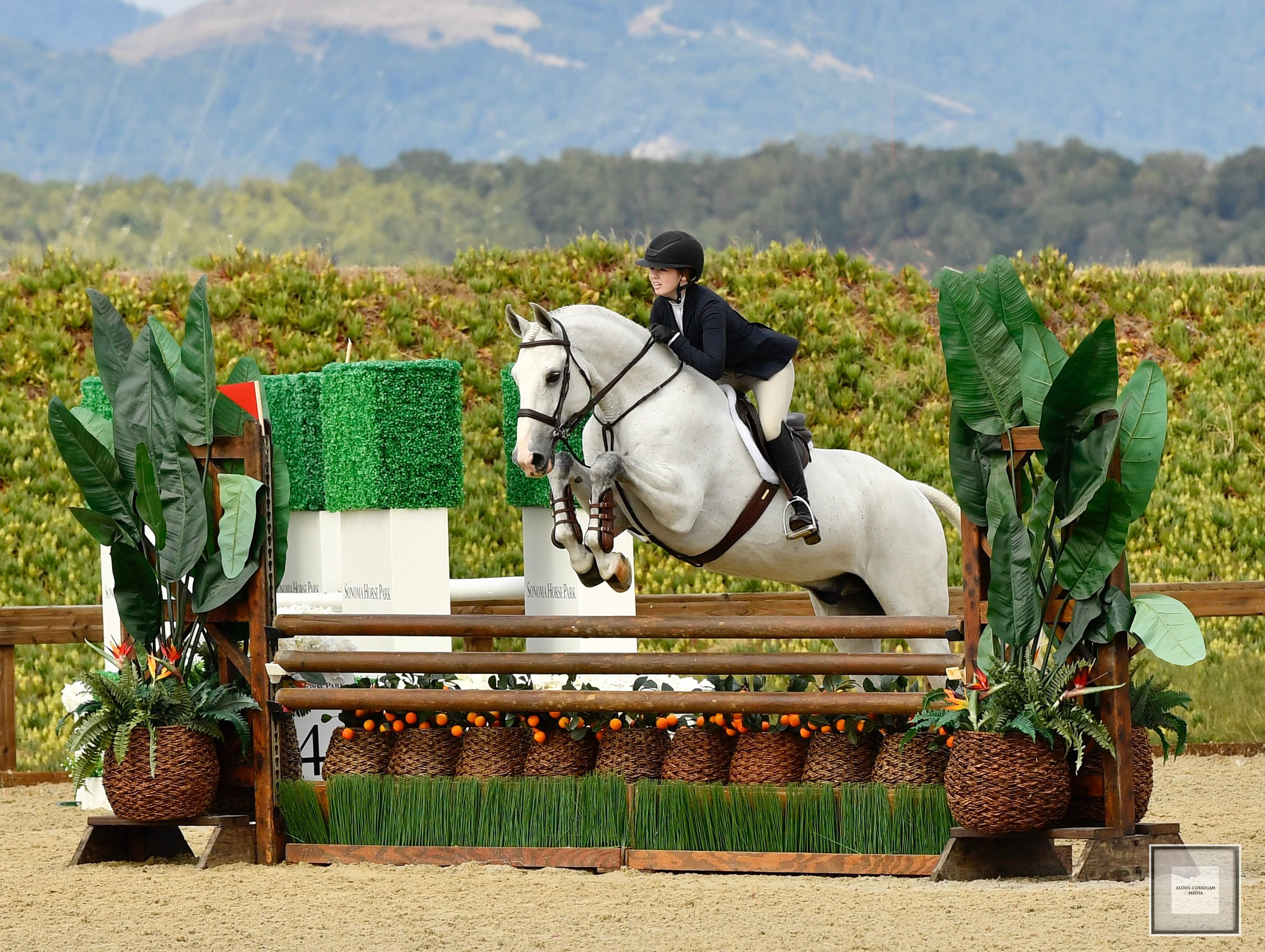 Student Skyler Allen and Winterfell at Sonoma Horse Park. Photography by Alden Corrigan Media​​​​​​​
