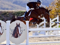 Rachel Fields showing at Sonoma Horse Park