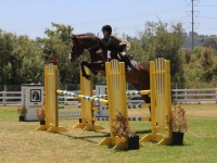 3'3 oxer