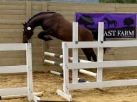 Exchequer free jump